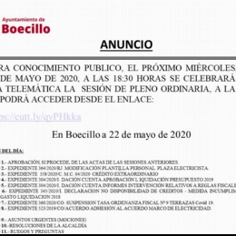 Pleno Ordinario Mayo 2020