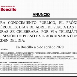 Pleno ExtraOrdinario 8 Abril 2020