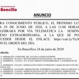Pleno ExtraOrdinario Junio 2020